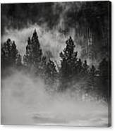 In The Steam Canvas Print