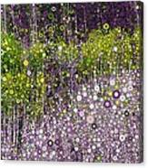 Just Beyond Emerald City Canvas Print