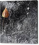 Leaf On Ice Canvas Print