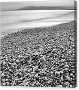 Little Stones At The Silver Sea Canvas Print