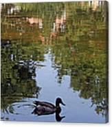 Living In Reflections Canvas Print