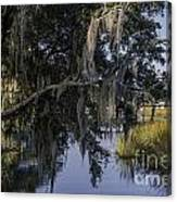 Lowcountry Creek Canvas Print