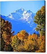 Montana Fall Canvas Print
