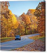 Natchez Trace Canvas Print