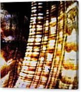 Natural Mosaicism Canvas Print
