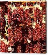 New Mexico Red Chili Ristra And Gralic Canvas Print