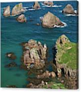 New Zealand, South Island Canvas Print