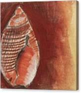 Ocean Shell Canvas Print