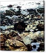 Ocean View Canvas Print