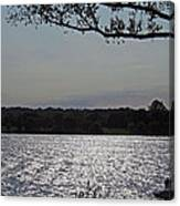 On A Glistening River Canvas Print