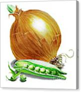 Onion And Peas Canvas Print