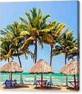Palm Trees And Sea Canvas Print