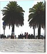 Palm Mirage Canvas Print