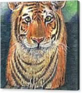 Patient Hunter Canvas Print