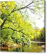 Pennsylvania Autumn Pennypack Creek Philadelphia Pennsylvania Canvas Print