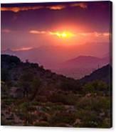 Pink Desert Skies  Canvas Print