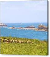 Pointe Du Grouin - Brittany Canvas Print
