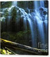 Proxy Falls Oregon Canvas Print