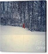 Red Flag On The Snow Covered Golf Course Canvas Print