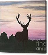 Red Stag At Dusk Canvas Print