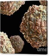 Rice Yellow Mottle Virus Canvas Print