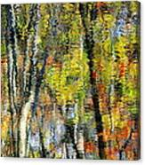 Rippley Reflection Canvas Print