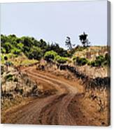 Road On Hierro Canvas Print