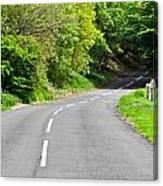 Rural Road Canvas Print
