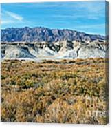 Salt Creek Death Valley National Park Canvas Print