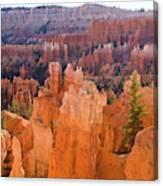 Sandstone Hoodoos Bryce Canyon  Canvas Print