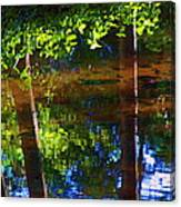 Santa Anita Creek Canvas Print