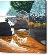 Sealers Creek Canvas Print