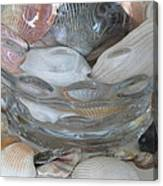Shells In Bubble Bowl 2 Canvas Print