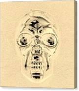 Skull In Sepia Canvas Print