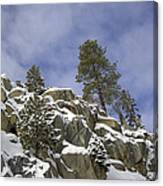 Snow Covered Cliffs And Trees II Canvas Print