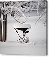 Snowy Bird Bath Canvas Print