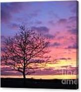 Spectacular Sunset Epsom Downs Surrey Uk Canvas Print