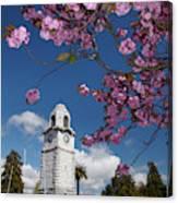 Spring Blossom And Memorial Clock Canvas Print