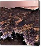 Starry Night Landscape Canvas Print