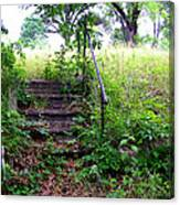 Steps To Yesterday Canvas Print