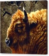 Stonebull Canvas Print
