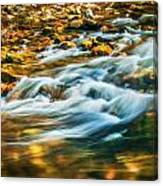 Stream Fall Colors Great Smoky Mountains Painted  Canvas Print