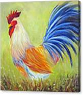 Strutting My Stuff, Rooster Canvas Print