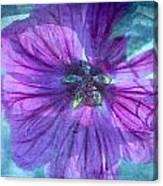 Summer Impressions Canvas Print