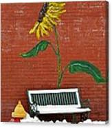 Sunflower And Snow Canvas Print