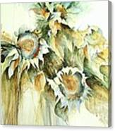 Sunflowers V Canvas Print