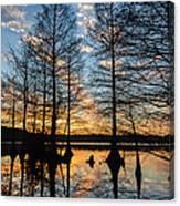Sunset At Stumpy Canvas Print