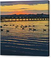 Sunset Geese Canvas Print