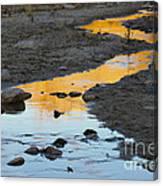 Sunset Reflected In Stream, Arizona Canvas Print