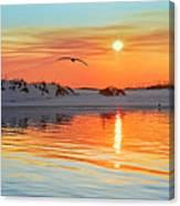 Sunswept Canvas Print